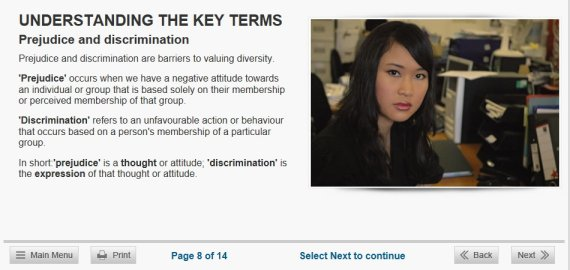 workplace diversity online training
